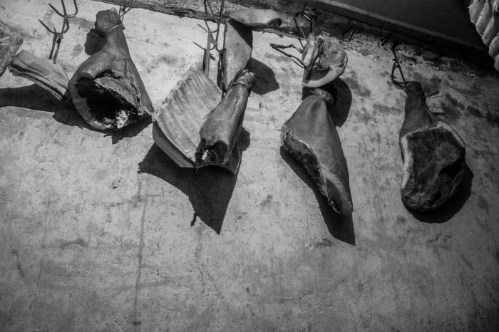 Los restos de la matanza